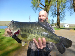 Big bass caught at Sprague Lake Resort